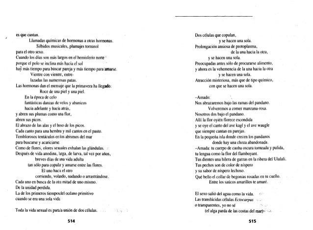 Cántico Cósmico de Ernesto Cardenal