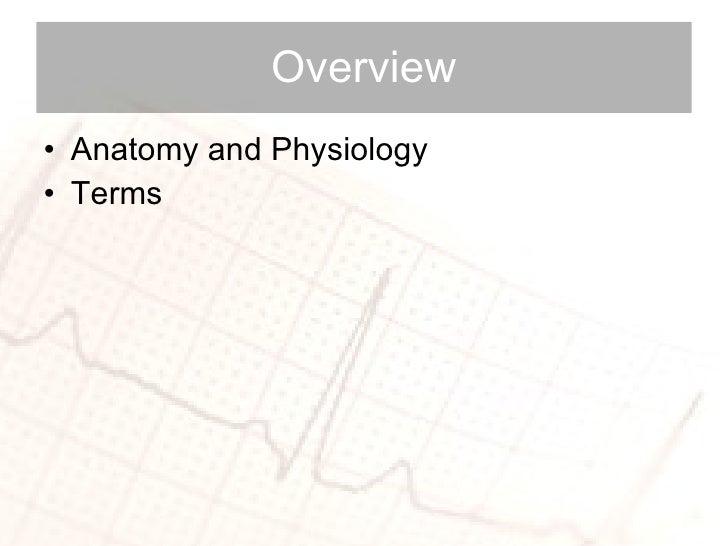 Cardiac Anatomy and Physiology