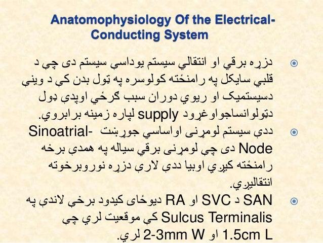 دی سیستم یوداسې سیستم انتقالي او برقي دزړهد چې ک بدن ټول په کولوسره رامنځته په سایکل ...
