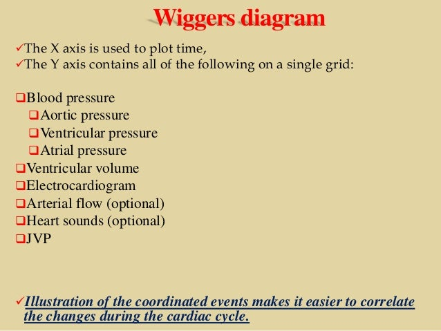 Cardiac cycle wiggers diagram ccuart Gallery