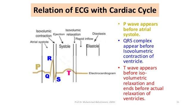 relationship between ecg and cardiac cycle