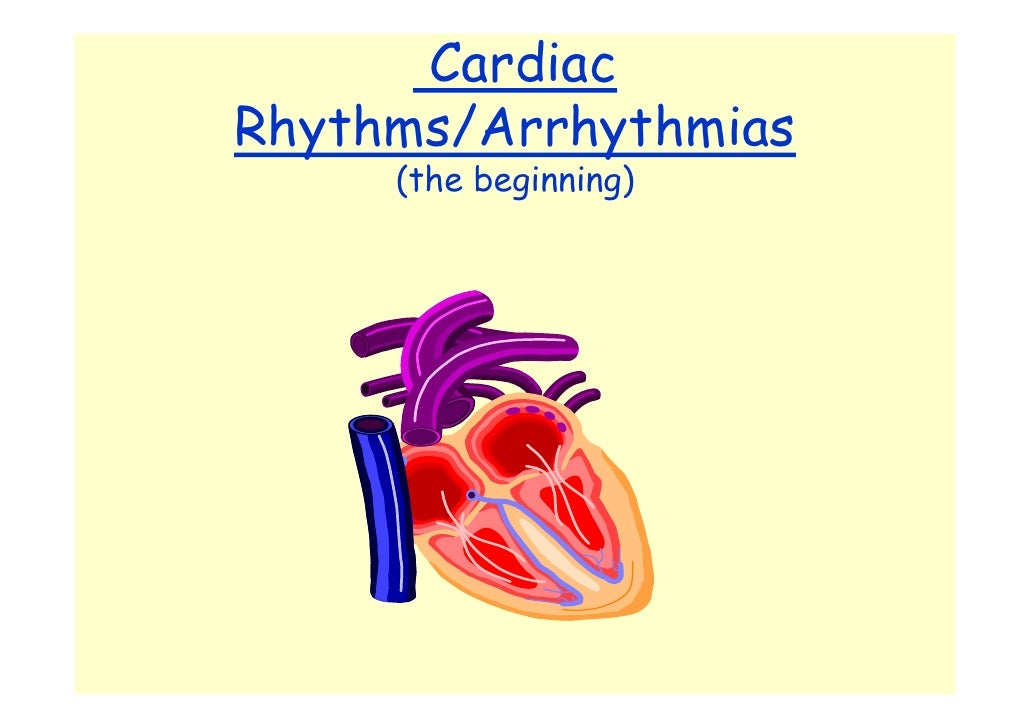 Cardiac Rhythms/Arrhythmias      (the beginning)