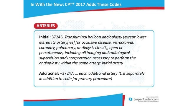 Lower Extremity Angiogram Procedure Cpt Code Image