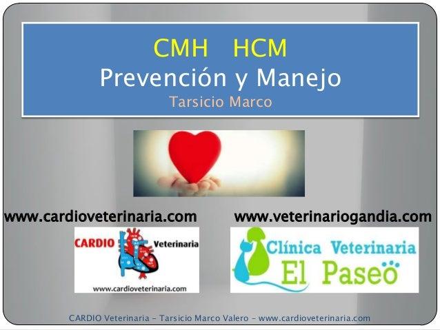 CMH HCM               Prevención y Manejo                               Tarsicio Marcowww.cardioveterinaria.com           ...
