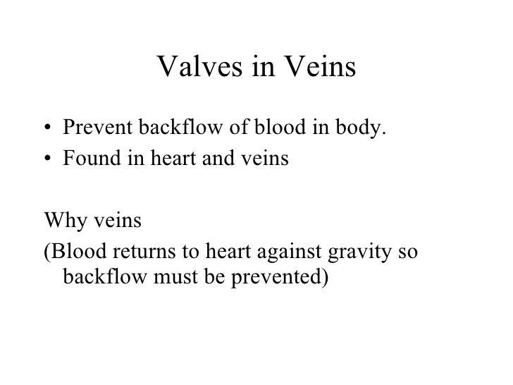 Valves in Veins <ul><li>Prevent backflow of blood in body.  </li></ul><ul><li>Found in heart and veins </li></ul><ul><li>W...