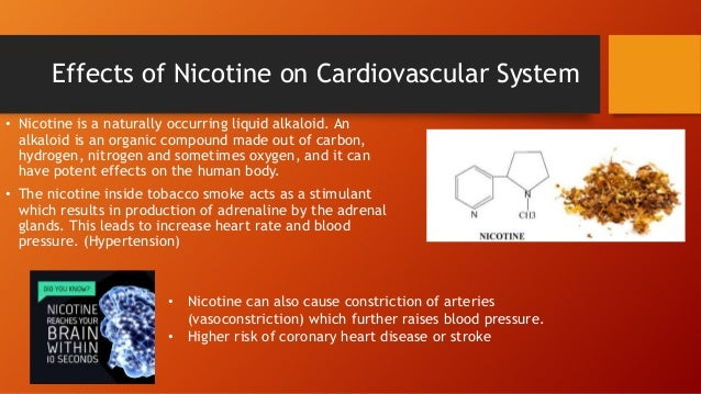 cause effect essay heart disease In addition to respiratory problems and lung cancer, smoking cigarettes can cause heart disease webmd offers tips for quitting.