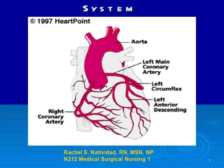 The Cardiovascular System Rachel S. Natividad, RN, MSN, NP N212 Medical Surgical Nursing 1