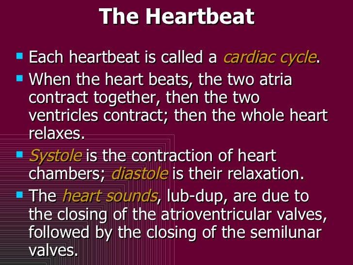 The Heartbeat <ul><li>Each heartbeat is called a  cardiac cycle . </li></ul><ul><li>When the heart beats, the two atria co...