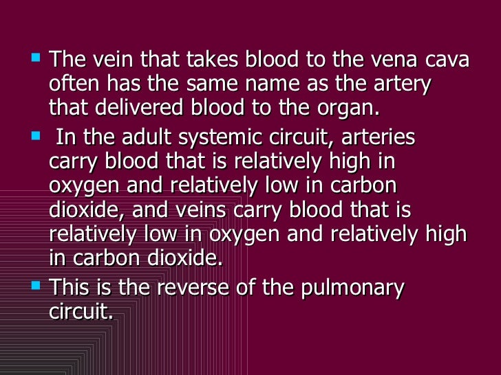 <ul><li>The vein that takes blood to the vena cava often has the same name as the artery that delivered blood to the organ...