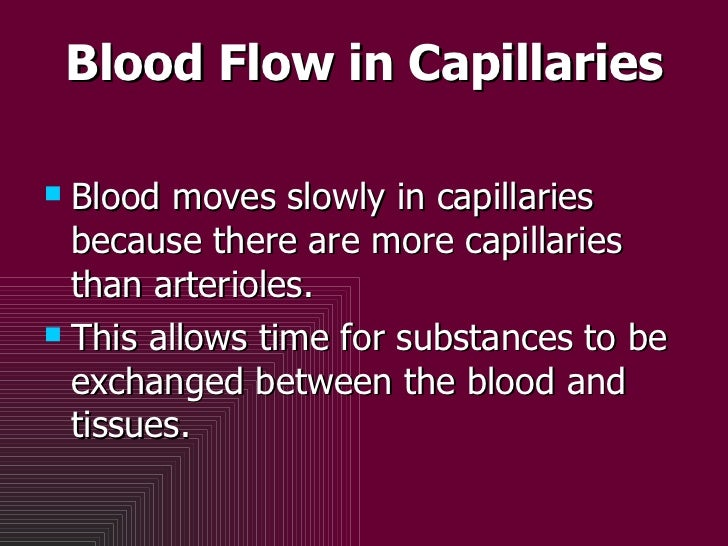 Blood Flow in Capillaries <ul><li>Blood moves slowly in capillaries because there are more capillaries than arterioles.  <...