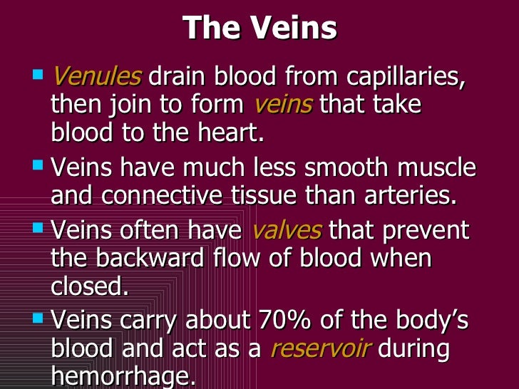 The Veins <ul><li>Venules   drain blood from capillaries, then join to form  veins  that take blood to the heart.  </li></...