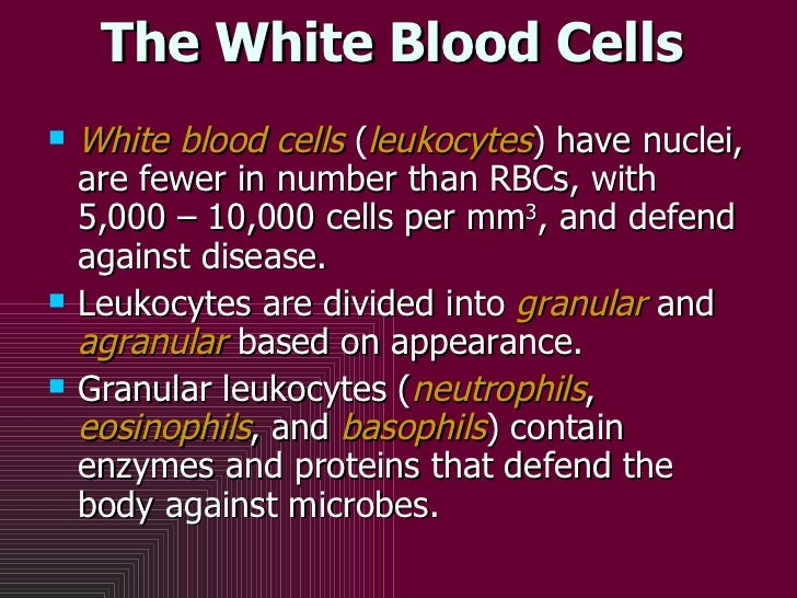 The White Blood Cells <ul><li>White blood cells  ( leukocytes ) have nuclei, are fewer in number than RBCs, with 5,000 – 1...