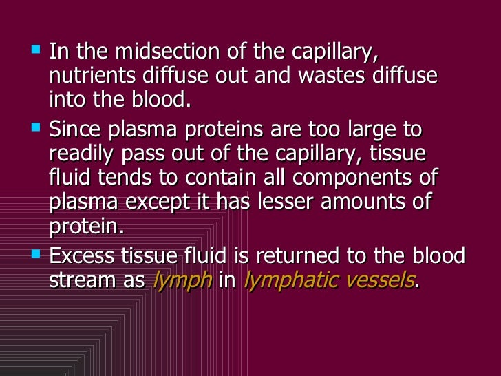 <ul><li>In the midsection of the capillary, nutrients diffuse out and wastes diffuse into the blood.  </li></ul><ul><li>Si...