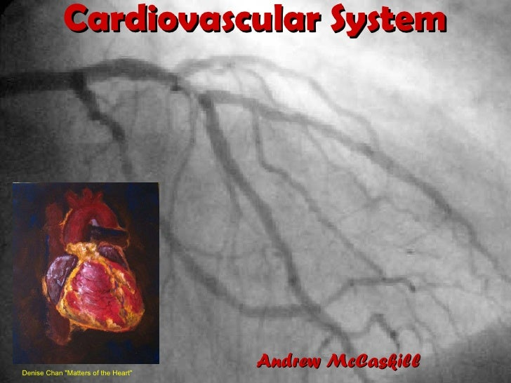 """Cardiovascular System Denise Chan """"Matters of the Heart""""  Andrew McCaskill"""