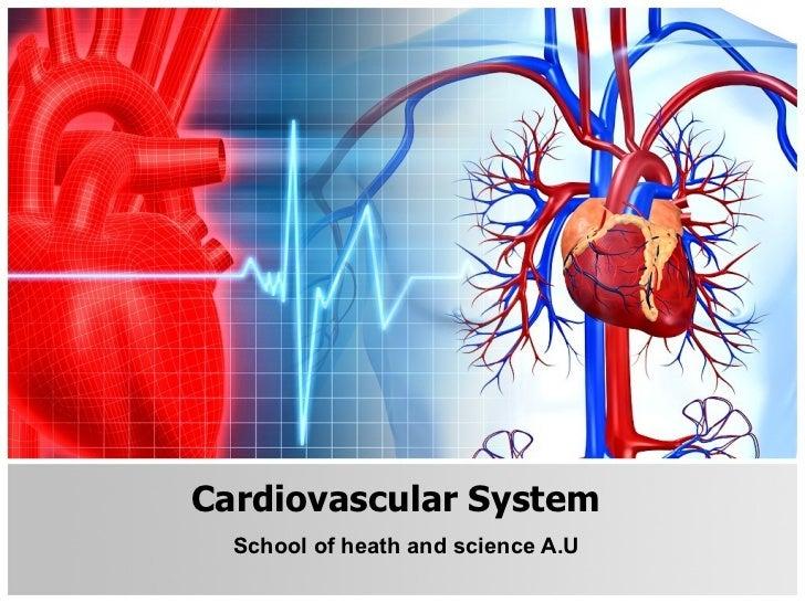 Cardiovascular System School of heath and science A.U