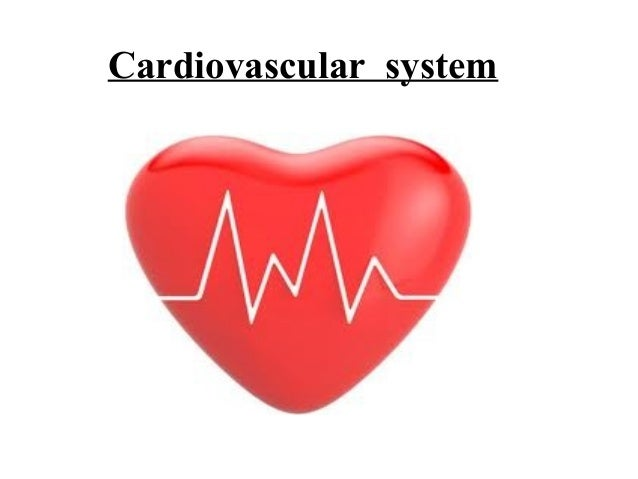 cardio vascular system 17082018 the cardiovascular system of the head and neck includes the vital arteries that provide oxygenated blood to the brain and.