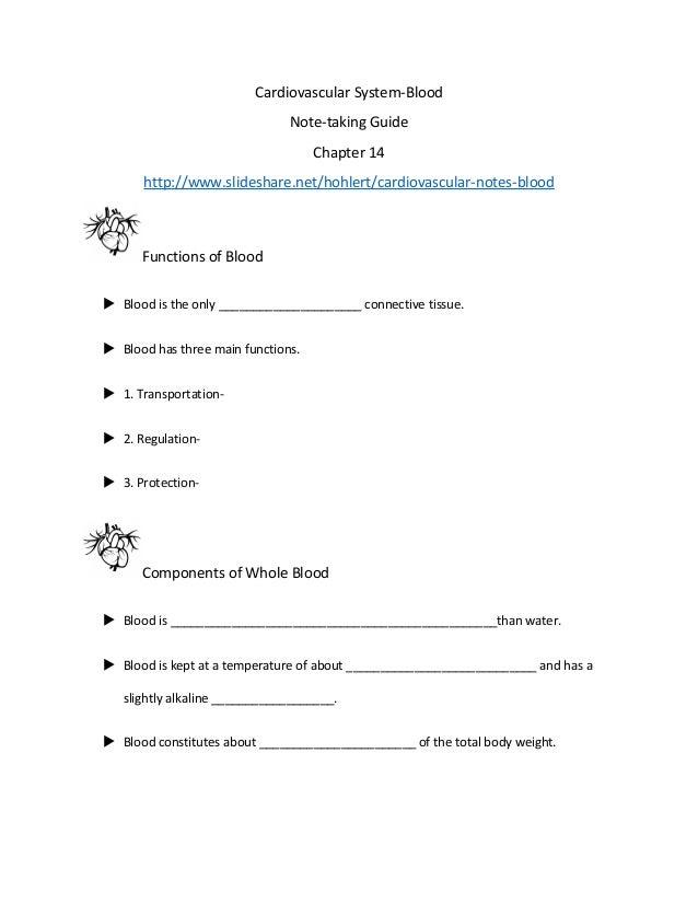 Cardiovascular system notes essay