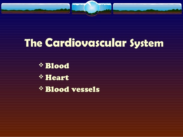The Cardiovascular System  Blood  Heart  Blood vessels