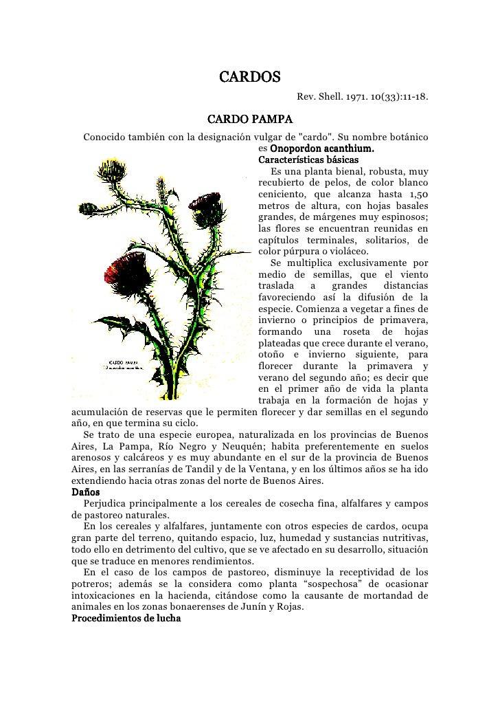 CARDOS                                                     Rev. Shell. 1971. 10(33):11-18.                                ...