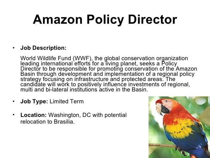Career   Environmental Policy Director At Wwf Slide 2