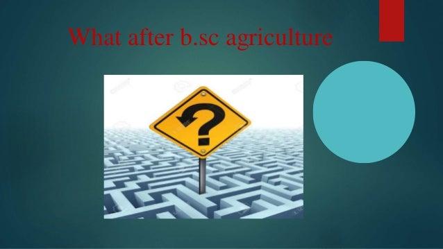 CAREER OPTION after B.Sc.Ag by suresh kumar panda Slide 2
