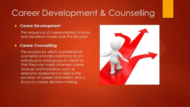 essay on career counselling