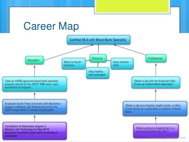 Career Map on