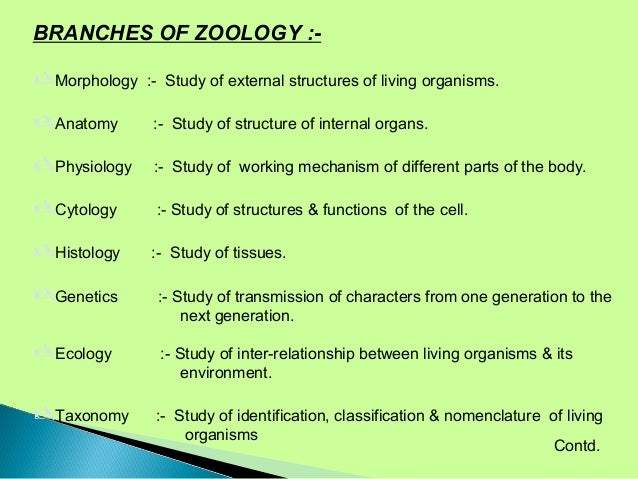 zoology career An undergraduate degree in biology with coursework in zoology and wildlife biology also is good preparation for a career as a zoologist or wildlife biologist.