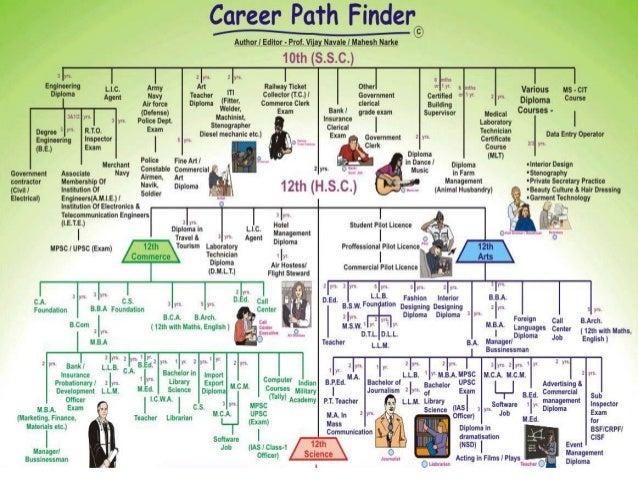 career orientation, Human Body