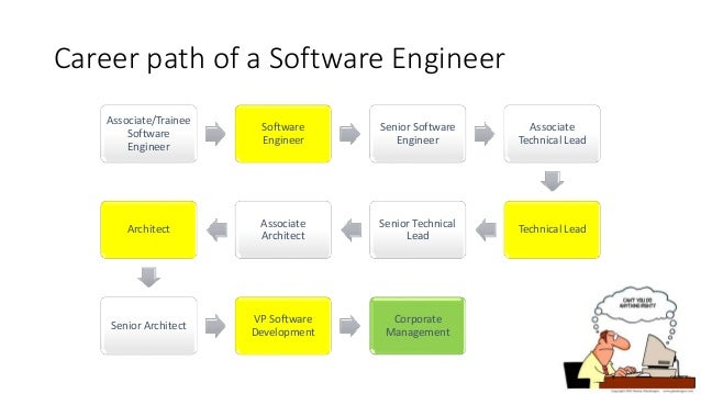 *The career path of a software engineer*