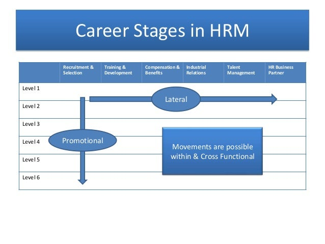 The 7 Career Stages and Why They affect Your Career Development ...
