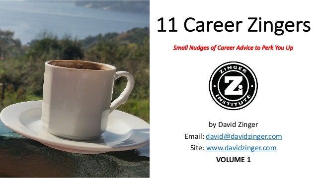 11CareerZingers SmallNudgesofCareerAdvicetoPerkYouUp byDavidZinger Email:david@davidzinger.com Site:www.davi...