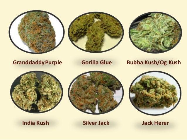 Marijuana Delivery San Jose - Care Givers of San Jose