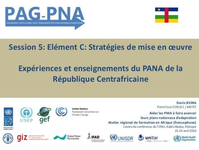 Session 5: Elément C: Stratégies de mise en œuvre Expériences et enseignements du PANA de la République Centrafricaine Den...