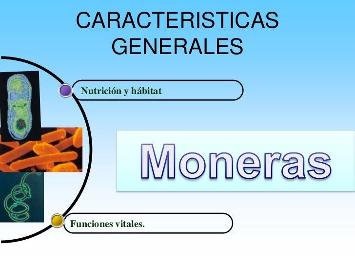 CARACTERISTICAS    GENERALES   Nutrición y hábitat     Funciones vitales.