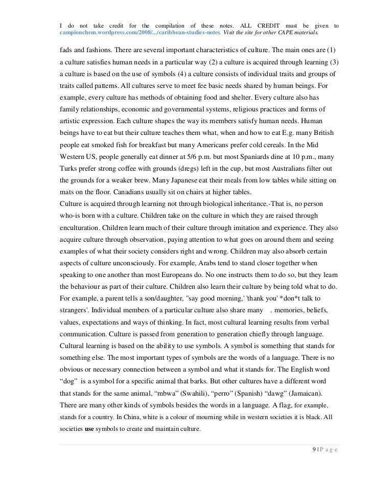 Taino culture essay example