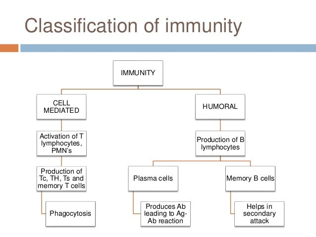 Caries Vaccine Ppt