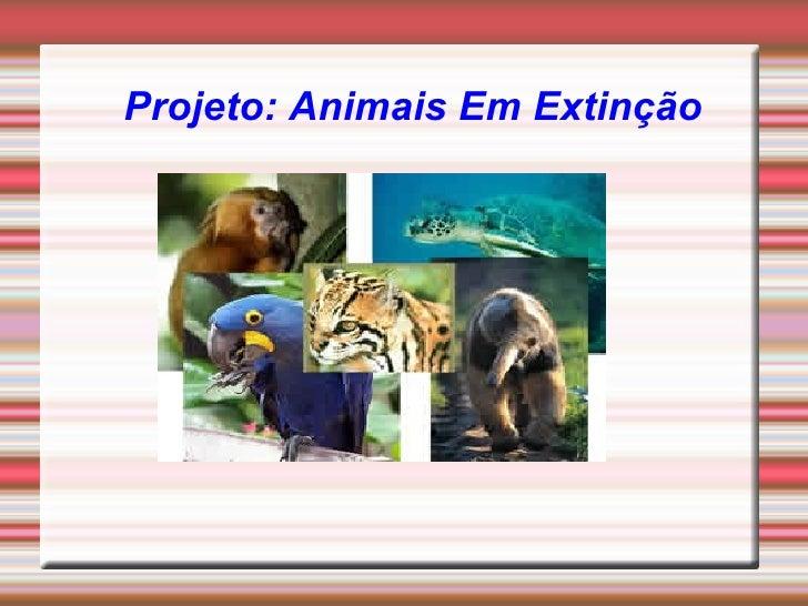 Projeto: Animais Em Extinção