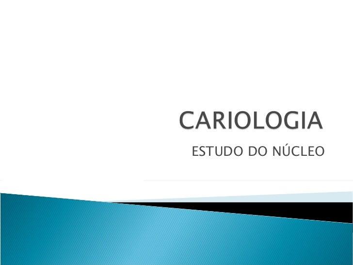 ESTUDO DO NÚCLEO
