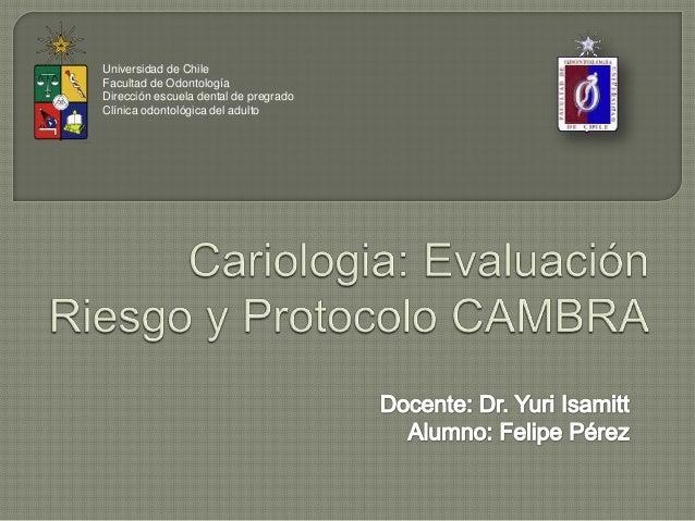 Universidad de ChileFacultad de OdontologíaDirección escuela dental de pregradoClínica odontológica del adulto