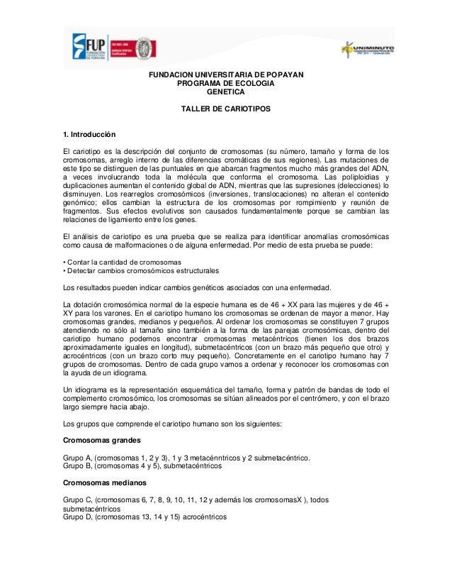 FUNDACION UNIVERSITARIA DE POPAYAN PROGRAMA DE ECOLOGIA GENETICA TALLER DE CARIOTIPOS 1. Introducción El cariotipo es la d...