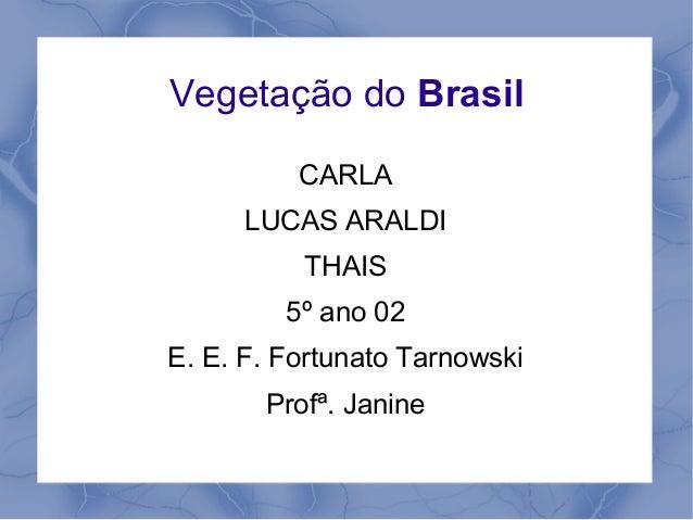 Vegetação do BrasilCARLALUCAS ARALDITHAIS5º ano 02E. E. F. Fortunato TarnowskiProfª. Janine