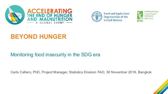 BEYOND HUNGER Monitoring food insecurity in the SDG era Carlo Cafiero, PhD, Project Manager, Statistics Division FAO, 30 N...