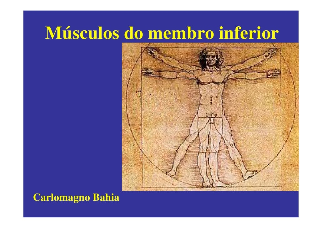 Músculos do membro inferior     Carlomagno Bahia