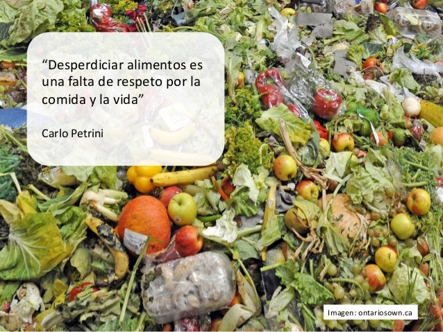 """""""Desperdiciar alimentos es una falta de respeto por la comida y la vida""""   Carlo Petrini ..."""