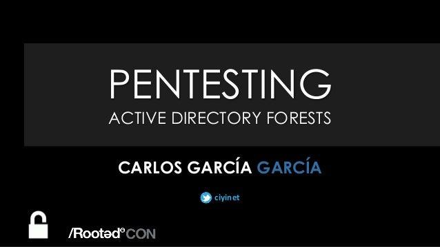 ciyinet PENTESTING ACTIVE DIRECTORY FORESTS CARLOS GARCÍA GARCÍA ciyinet