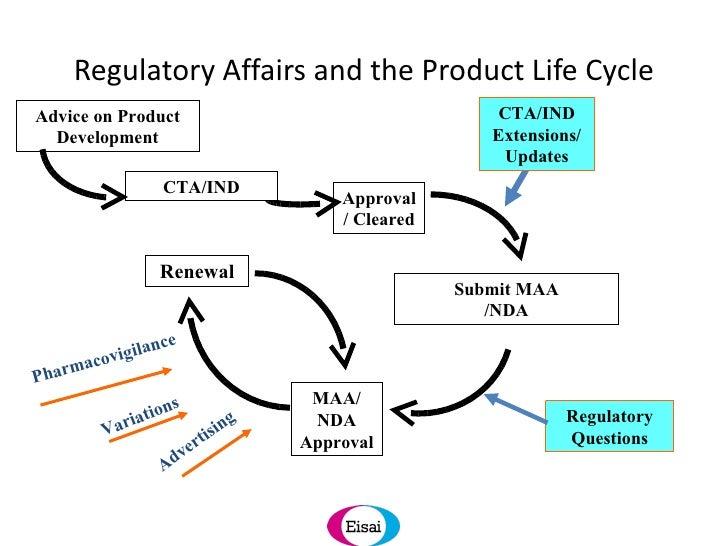 regulatory plan template - the importance of developing a global regulatory strategy