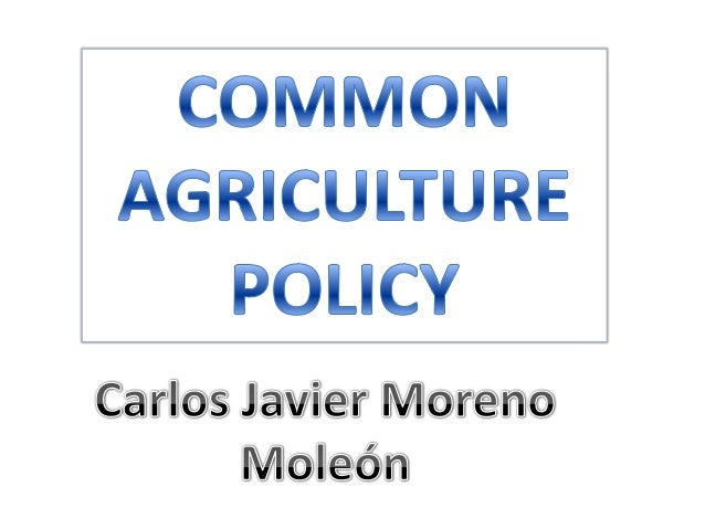 The Common Agricultural Policy (CAP) allows European farmers to meet the needs of500 million Europeans. Its main objective...
