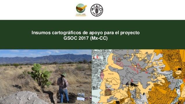 Insumos cartográficos de apoyo para el proyecto GSOC 2017 (Mx-CC)