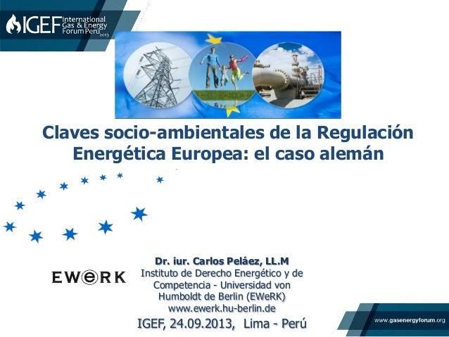 Dr. iur. Carlos Peláez, LL.M Instituto de Derecho Energético y de Competencia - Universidad von Humboldt de Berlin (EWeRK)...